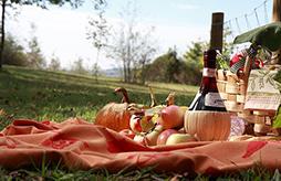 picnics chianti