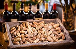 scecial-chianti-wine-organic